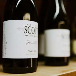 Allan Scott Marlborough New Zealand Pinot Gris