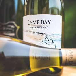 Lyme Bay Devon shoreline white wine England