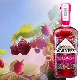 warners raspberry gin