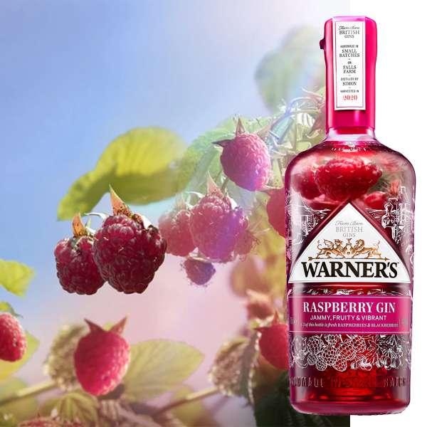 warners raspberry gin