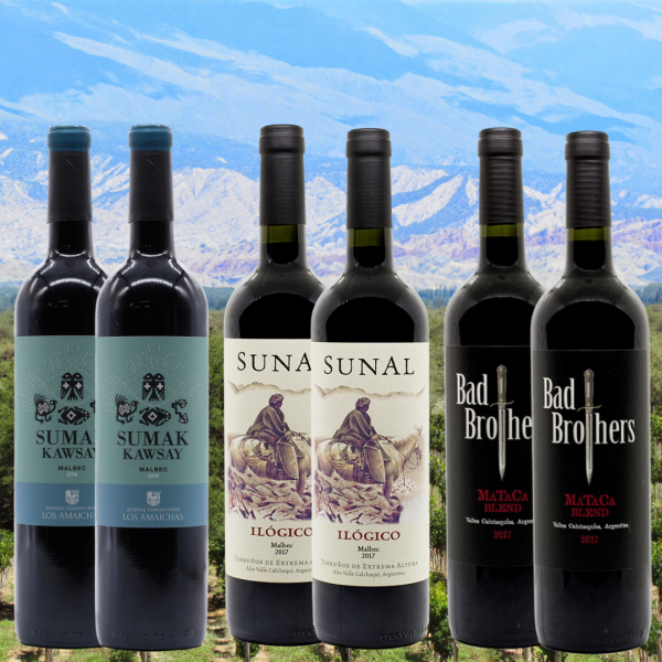agustin lanus malbec mixed case
