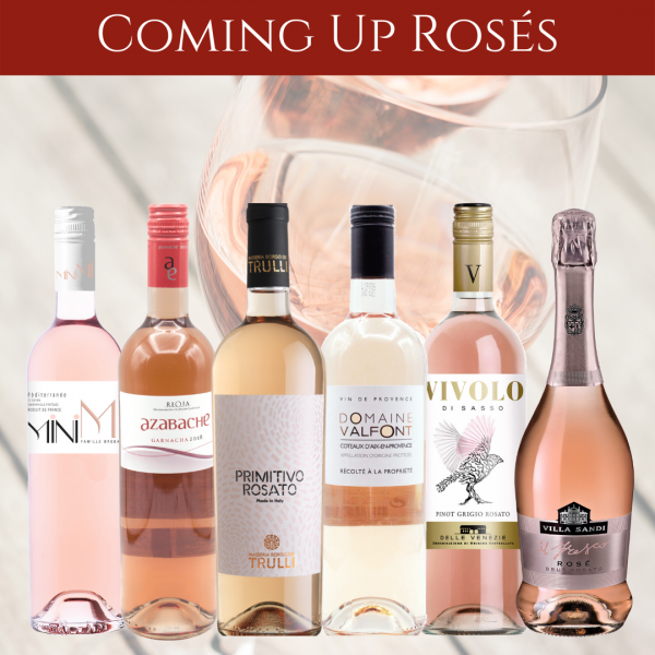 rose wine mixed case