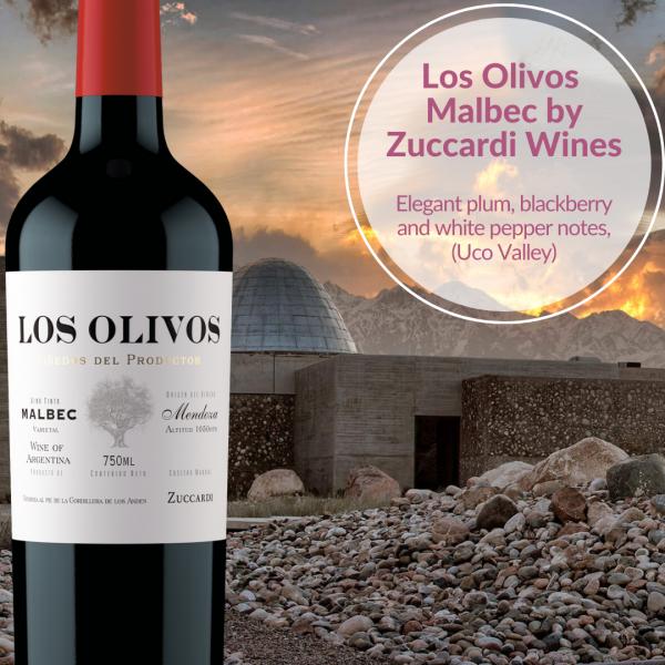 Los Olivos Malbec Zuccardi wines